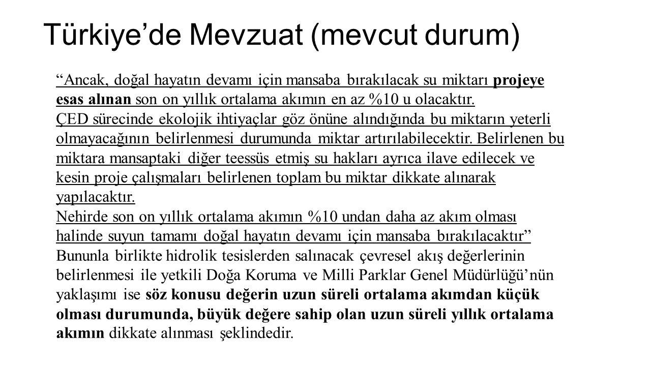 """Türkiye'de Mevzuat (mevcut durum) """"Ancak, doğal hayatın devamı için mansaba bırakılacak su miktarı projeye esas alınan son on yıllık ortalama akımın e"""