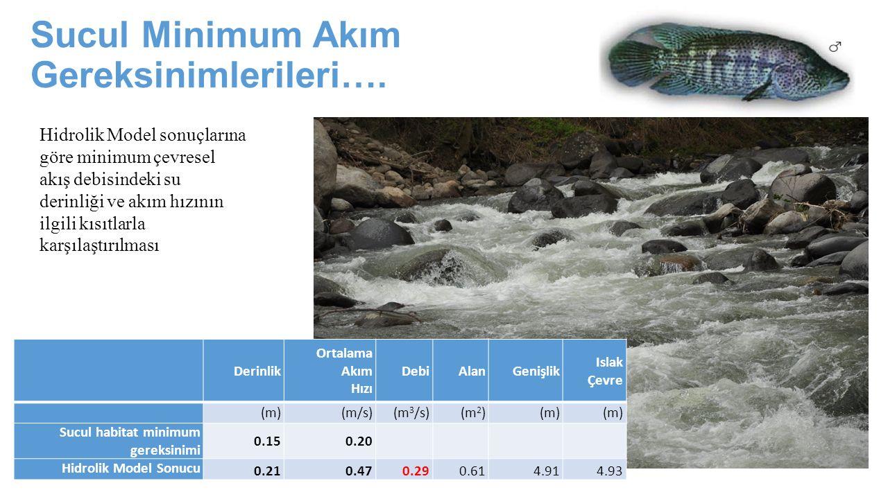 Sucul Minimum Akım Gereksinimlerileri…. Derinlik Ortalama Akım Hızı DebiAlanGenişlik Islak Çevre (m)(m/s)(m 3 /s)(m 2 )(m) Sucul habitat minimum gerek