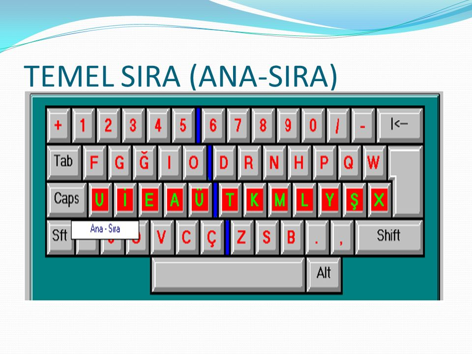 TEMEL SIRA (ANA-SIRA)