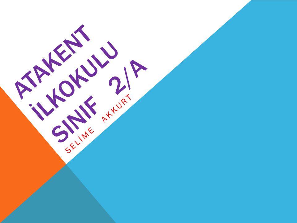ATAKENT İLKOKULU SINIF 2/A SELİME AKKURT