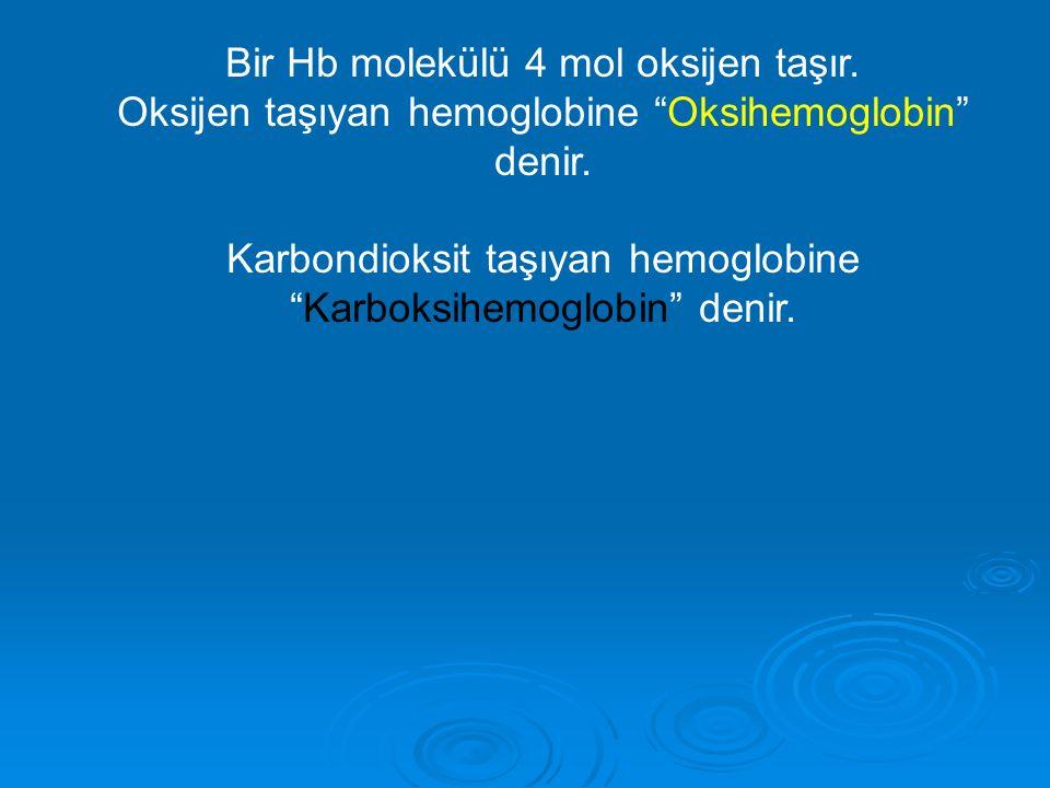 """Bir Hb molekülü 4 mol oksijen taşır. Oksijen taşıyan hemoglobine """"Oksihemoglobin"""" denir. Karbondioksit taşıyan hemoglobine """"Karboksihemoglobin"""" denir."""