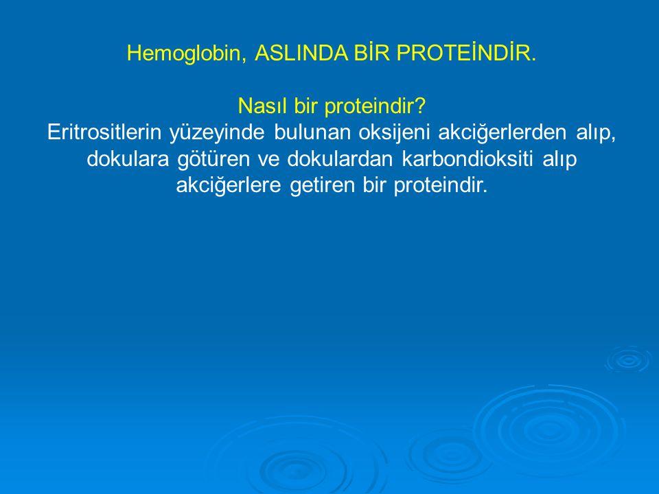 Hemoglobin, ASLINDA BİR PROTEİNDİR. Nasıl bir proteindir? Eritrositlerin yüzeyinde bulunan oksijeni akciğerlerden alıp, dokulara götüren ve dokulardan