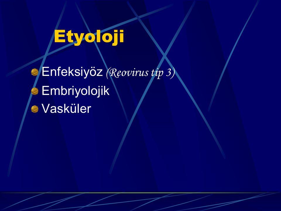 Etyoloji Enfeksiyöz (Reovirus tip 3) Embriyolojik Vasküler