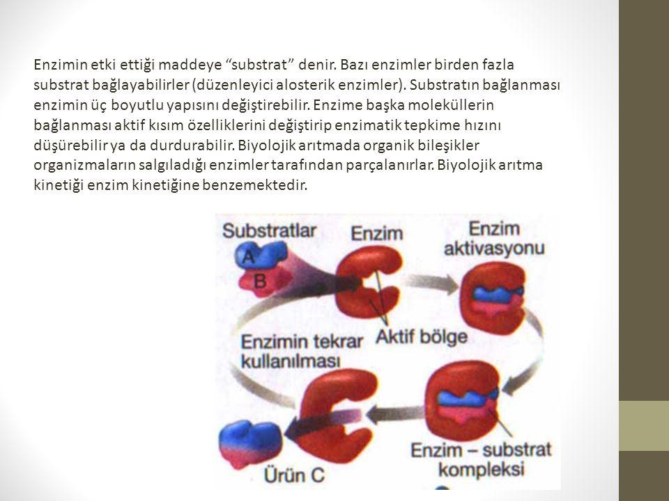 """Enzimin etki ettiği maddeye """"substrat"""" denir. Bazı enzimler birden fazla substrat bağlayabilirler (düzenleyici alosterik enzimler). Substratın bağlanm"""