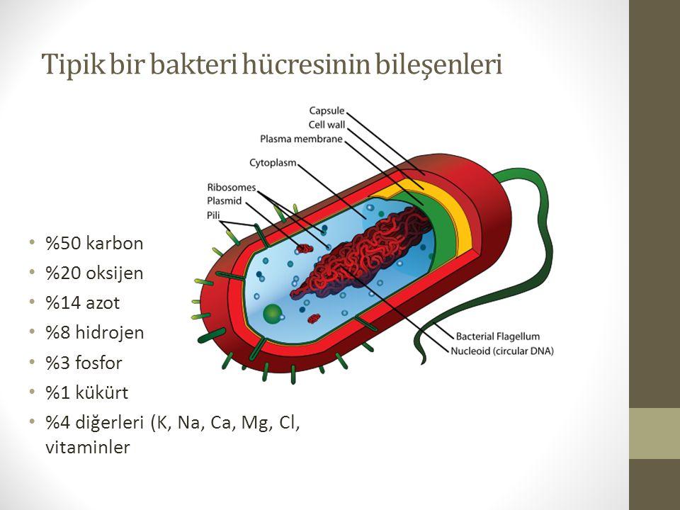 Tipik bir bakteri hücresinin bileşenleri %50 karbon %20 oksijen %14 azot %8 hidrojen %3 fosfor %1 kükürt %4 diğerleri (K, Na, Ca, Mg, Cl, vitaminler