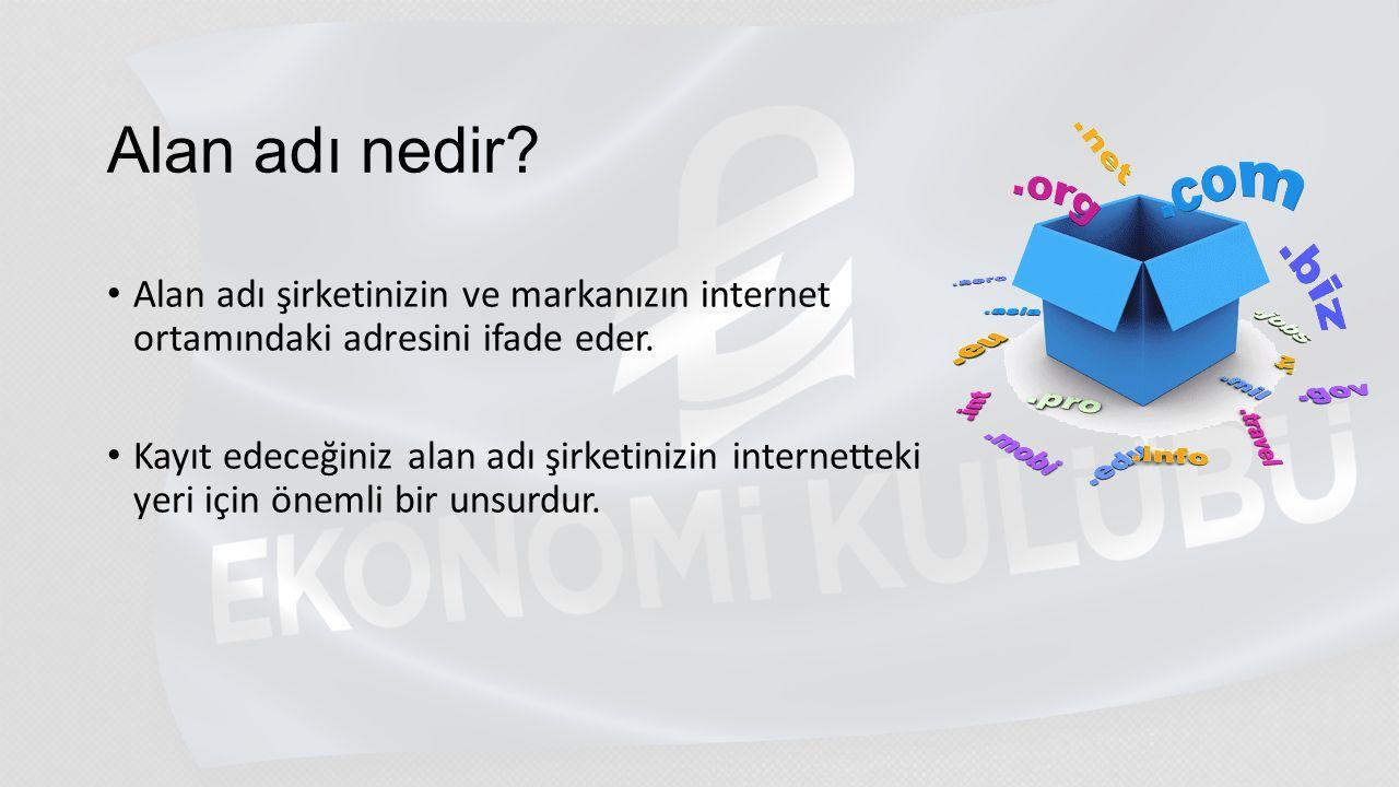 ALAN ADI SEÇENEKLERİ; com (commercial) net ( network) org (organization) gov (goverment) edu (education) gibi..