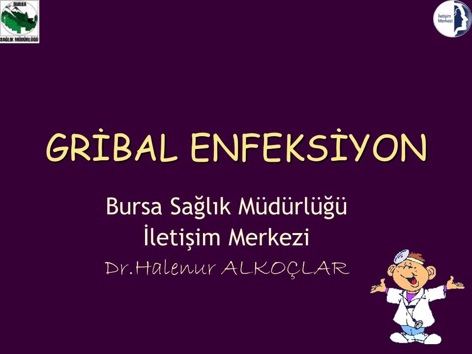 GRİBAL ENFEKSİYON Bursa Sağlık Müdürlüğü İletişim Merkezi Dr.Halenur ALKOÇLAR