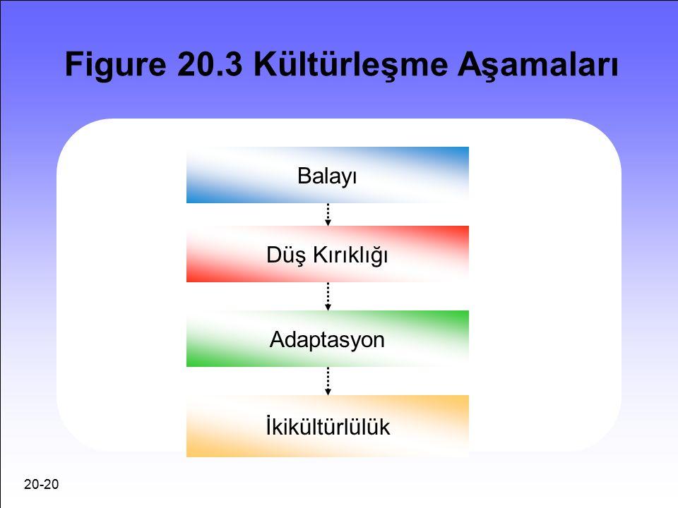 20-20 Figure 20.3 Kültürleşme Aşamaları Balayı Düş Kırıklığı Adaptasyon İkikültürlülük