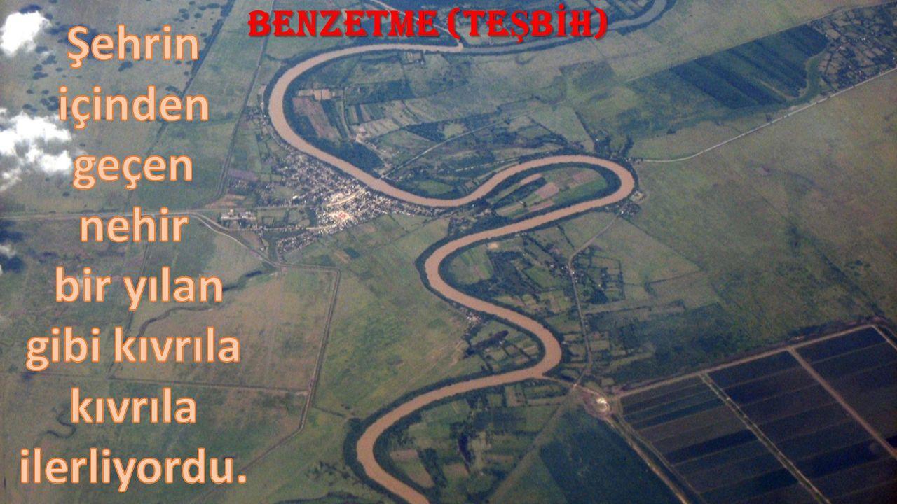 BENZETME (TE Ş B İ H)
