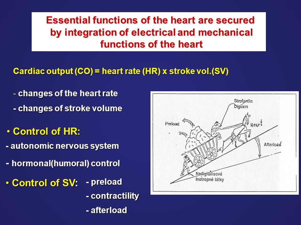 What is present in this extremity, common to right sided HF?