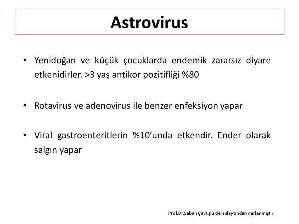 Astrovirus Yenidoğan ve küçük çocuklarda endemik zararsız diyare etkenidirler. >3 yaş antikor pozitifliği %80 Rotavirus ve adenovirus ile benzer enfek