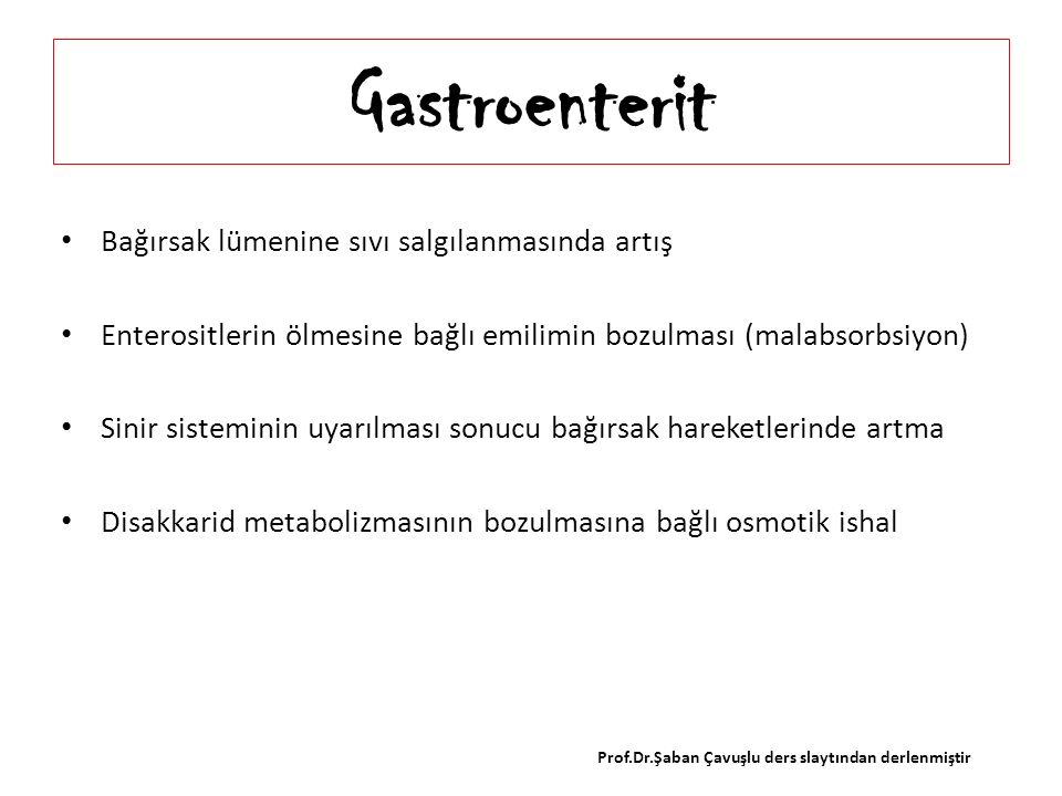 Gastroenterit Bağırsak lümenine sıvı salgılanmasında artış Enterositlerin ölmesine bağlı emilimin bozulması (malabsorbsiyon) Sinir sisteminin uyarılma