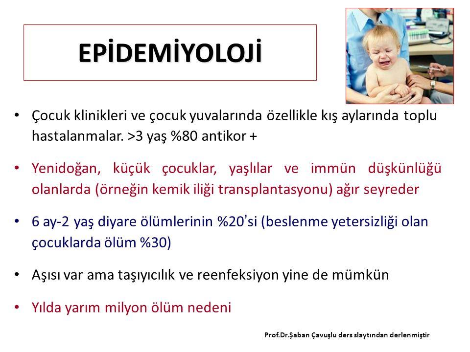 EPİDEMİYOLOJİ Çocuk klinikleri ve çocuk yuvalarında özellikle kış aylarında toplu hastalanmalar. >3 yaş %80 antikor + Yenidoğan, küçük çocuklar, yaşlı