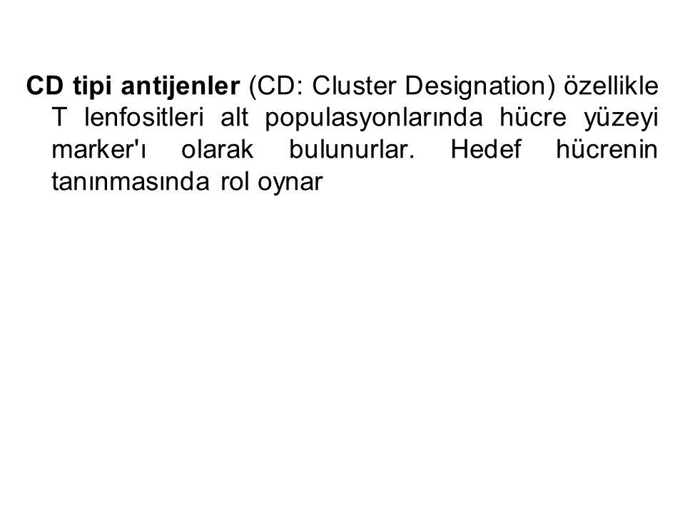 CD tipi antijenler (CD: Cluster Designation) özellikle T lenfositleri alt populasyonlarında hücre yüzeyi marker'ı olarak bulunurlar. Hedef hücrenin ta