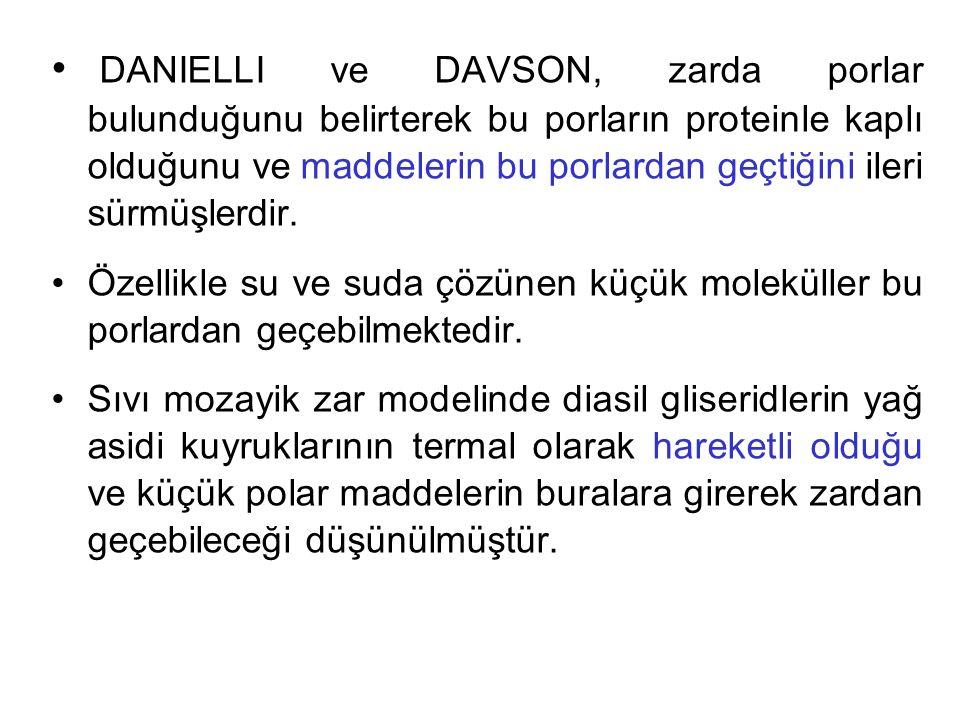 DANIELLI ve DAVSON, zarda porlar bulunduğunu belirterek bu porların proteinle kaplı olduğunu ve maddelerin bu porlardan geçtiğini ileri sürmüşlerdir.