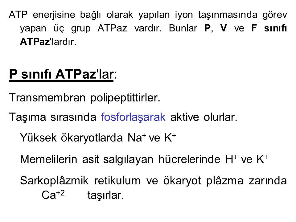 ATP enerjisine bağlı olarak yapılan iyon taşınmasında görev yapan üç grup ATPaz vardır. Bunlar P, V ve F sınıfı ATPaz'lardır. P sınıfı ATPaz'lar: Tran