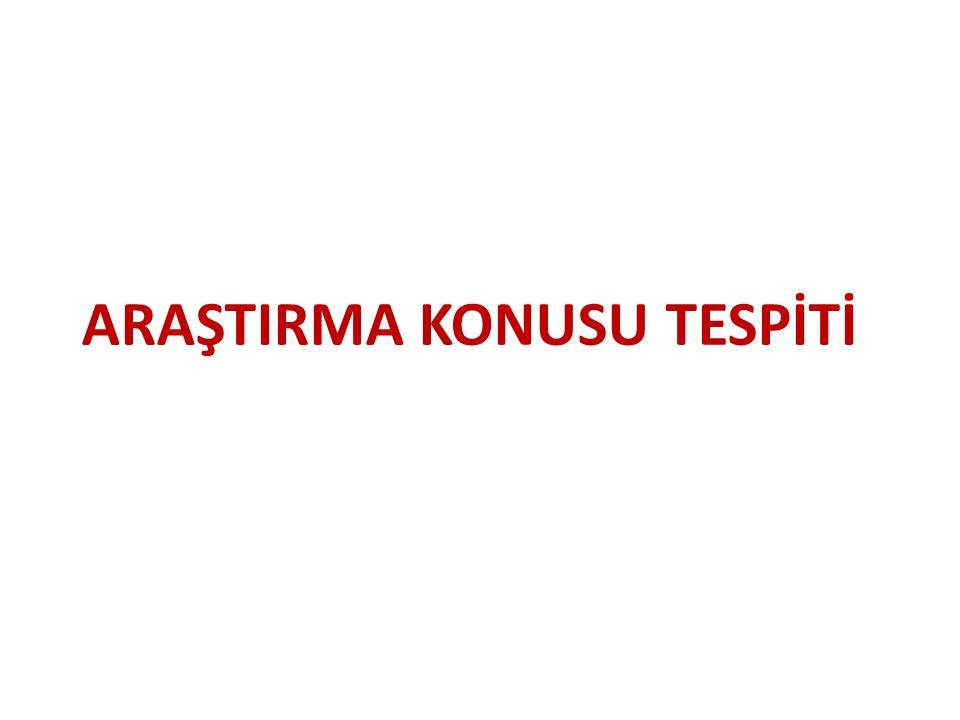 ARAŞTIRMA KONUSU TESPİTİ