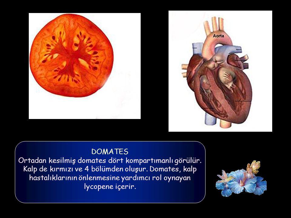 PATLICAN, AVAKADO, ARMUT Tayar, bu meyveler ortadan ikiye kesildiğinde, anne rahmine benzer şekil gösterdiğini ifade ederek, bu gıdaların, dengeli tük