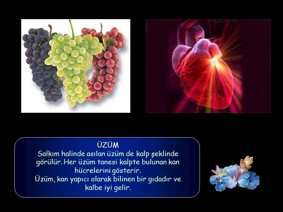 ÜZÜM Salkım halinde asılan üzüm de kalp şeklinde görülür.