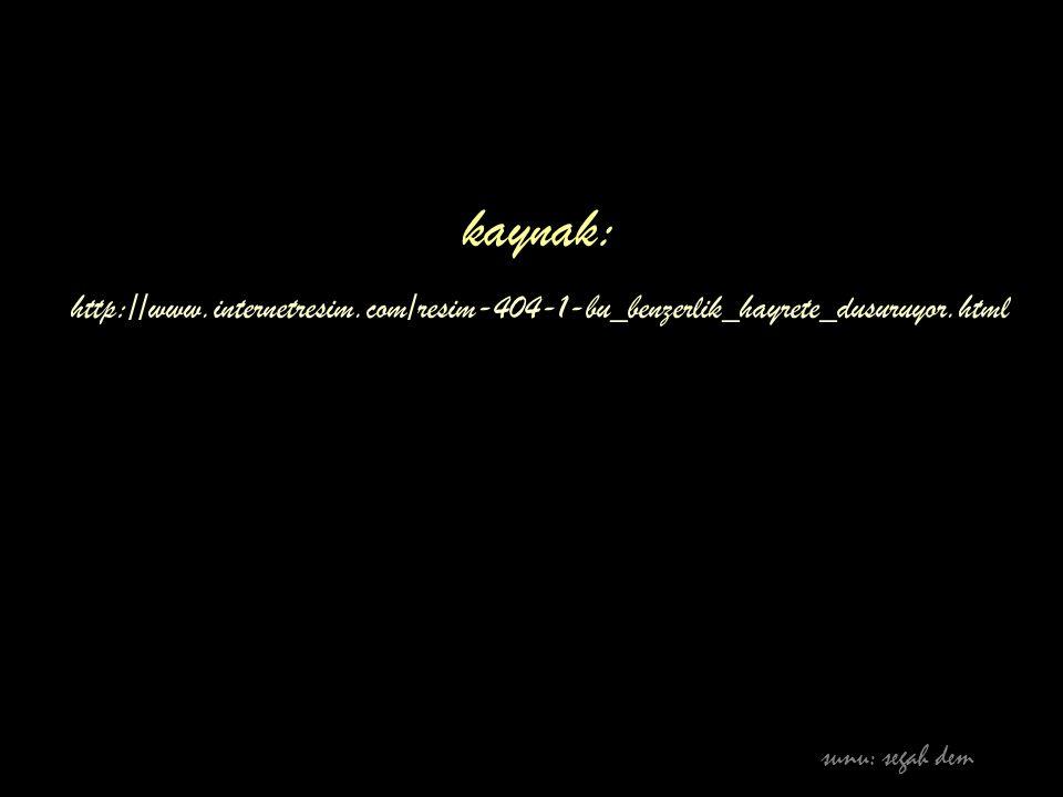 kaynak: http://www.internetresim.com/resim-404-1-bu_benzerlik_hayrete_dusuruyor.html sunu: segah dem
