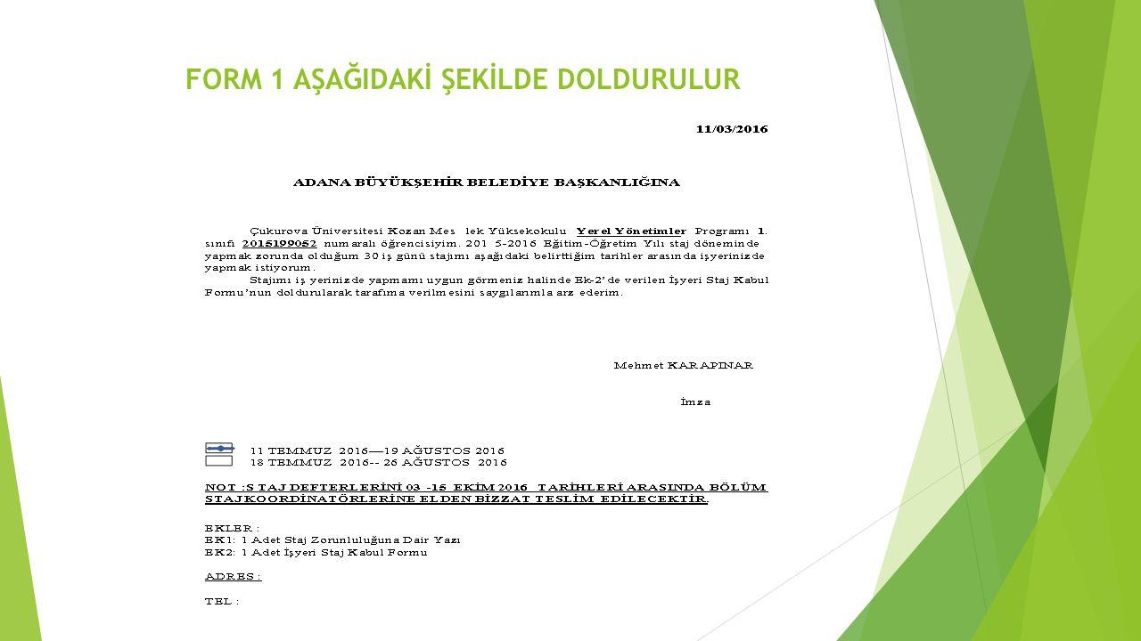 FORM 1 AŞAĞIDAKİ ŞEKİLDE DOLDURULUR