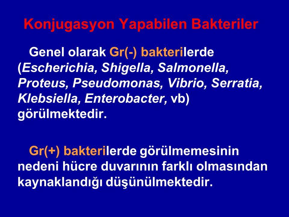 Konjugasyon Yapabilen Bakteriler Genel olarak Gr(-) bakterilerde (Escherichia, Shigella, Salmonella, Proteus, Pseudomonas, Vibrio, Serratia, Klebsiell