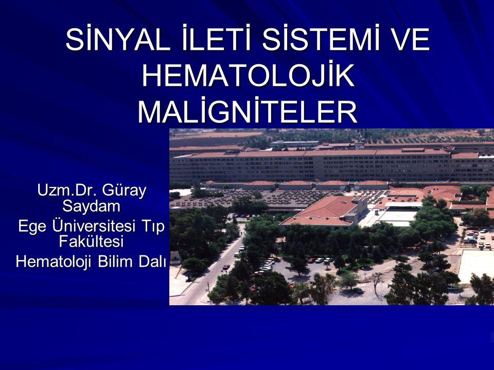 SİNYAL İLETİ SİSTEMİ VE HEMATOLOJİK MALİGNİTELER Uzm.Dr. Güray Saydam Ege Üniversitesi Tıp Fakültesi Hematoloji Bilim Dalı