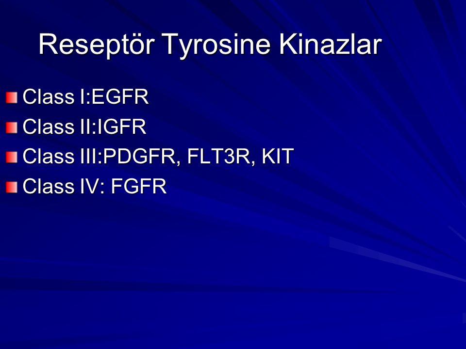 Reseptör Tyrosine Kinazlar Class I:EGFR Class II:IGFR Class III:PDGFR, FLT3R, KIT Class IV: FGFR