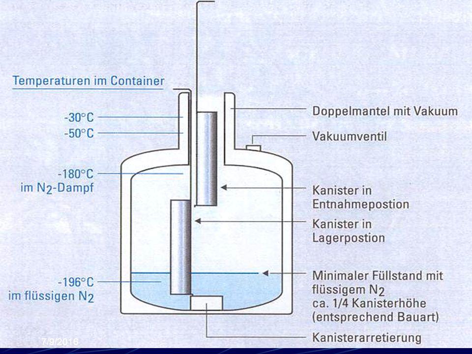-196°C -170 °C -50°C -30 °C Kanister Oturağı Konteyner Duvarı Sıvı Azot Azot Buharı -196°C -170°C Payet Kanister DOĞRU MANİPLASYONHATALI MANİPLASYON