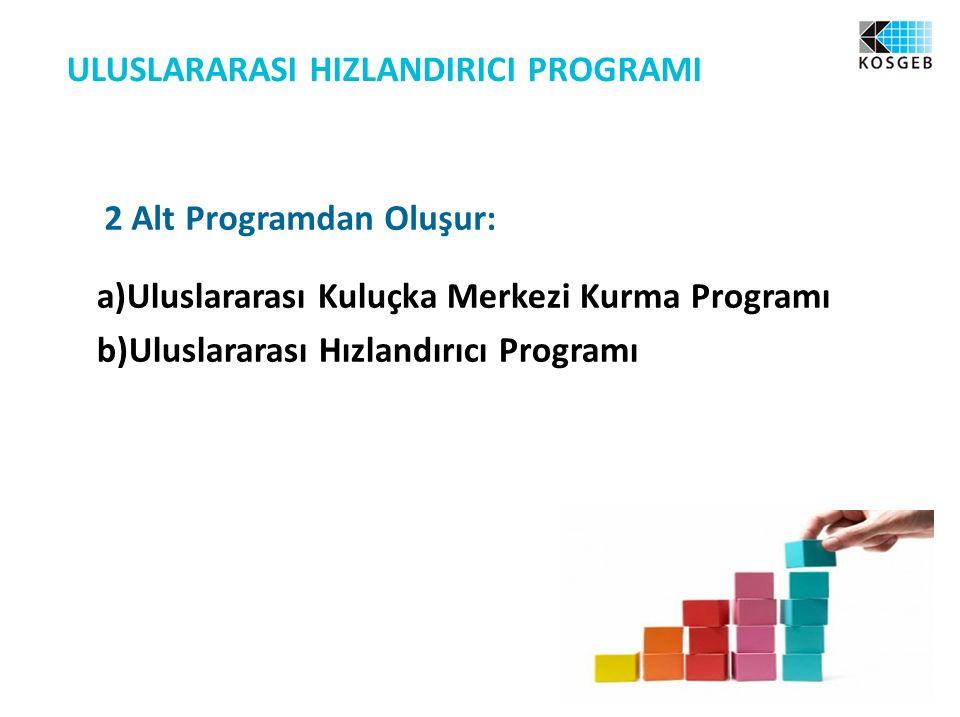 2 Alt Programdan Oluşur: a)Uluslararası Kuluçka Merkezi Kurma Programı b)Uluslararası Hızlandırıcı Programı ULUSLARARASI HIZLANDIRICI PROGRAMI