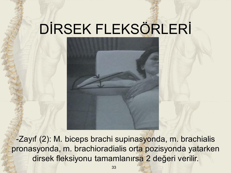 33 DİRSEK FLEKSÖRLERİ -Zayıf (2): M. biceps brachi supinasyonda, m.