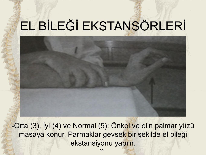 55 EL BİLEĞİ EKSTANSÖRLERİ -Orta (3), İyi (4) ve Normal (5): Önkol ve elin palmar yüzü masaya konur.