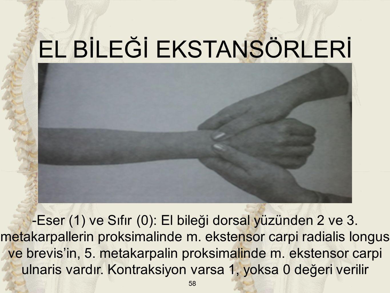 58 EL BİLEĞİ EKSTANSÖRLERİ -Eser (1) ve Sıfır (0): El bileği dorsal yüzünden 2 ve 3.