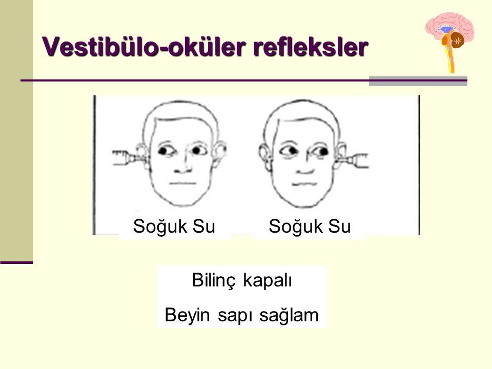 Vestibülo-oküler refleksler Bilinç kapalı Beyin sapı sağlam Soğuk Su