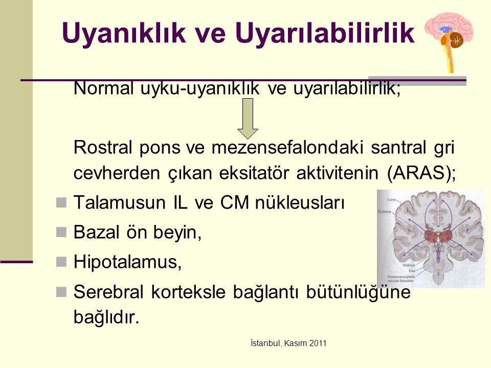 İstanbul, Kasım 2011 Uyanıklık ve Uyarılabilirlik Normal uyku-uyanıklık ve uyarılabilirlik; Rostral pons ve mezensefalondaki santral gri cevherden çıkan eksitatör aktivitenin (ARAS); Talamusun IL ve CM nükleusları Bazal ön beyin, Hipotalamus, Serebral korteksle bağlantı bütünlüğüne bağlıdır.