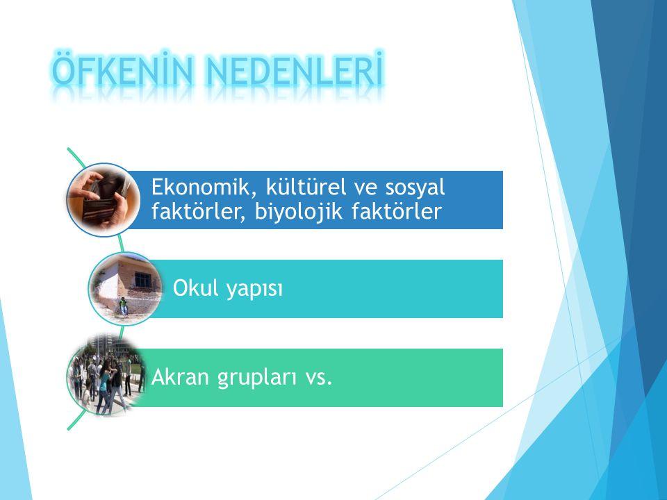 Ekonomik, kültürel ve sosyal faktörler, biyolojik faktörler Okul yapısı Akran grupları vs.