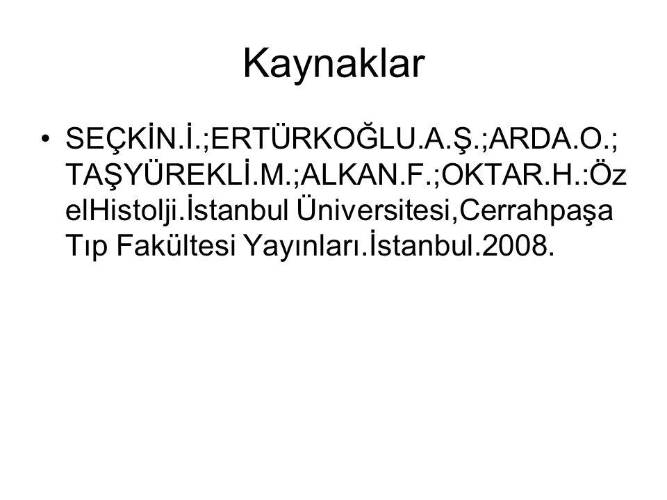 Kaynaklar SEÇKİN.İ.;ERTÜRKOĞLU.A.Ş.;ARDA.O.; TAŞYÜREKLİ.M.;ALKAN.F.;OKTAR.H.:Öz elHistolji.İstanbul Üniversitesi,Cerrahpaşa Tıp Fakültesi Yayınları.İstanbul.2008.