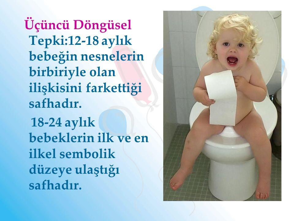 Üçüncü Döngüsel Tepki:12-18 aylık bebeğin nesnelerin birbiriyle olan ilişkisini farkettiği safhadır. 18-24 aylık bebeklerin ilk ve en ilkel sembolik d