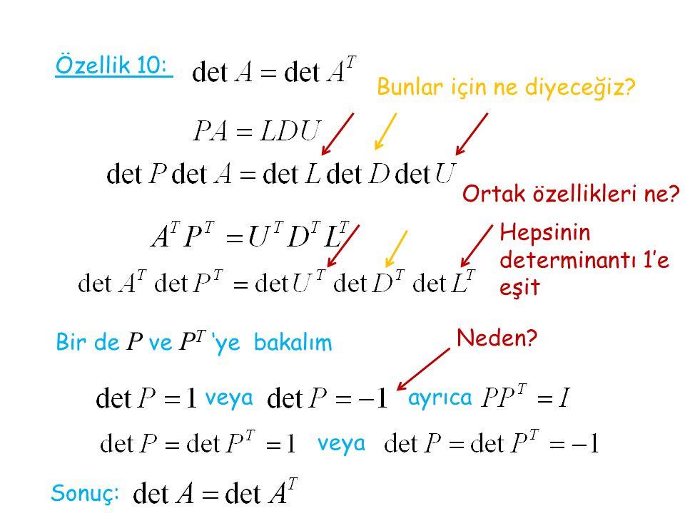 Özellik 10: Ortak özellikleri ne? Hepsinin determinantı 1'e eşit Bir de P ve P T 'ye bakalım veya Neden? ayrıca veya Sonuç: Bunlar için ne diyeceğiz?