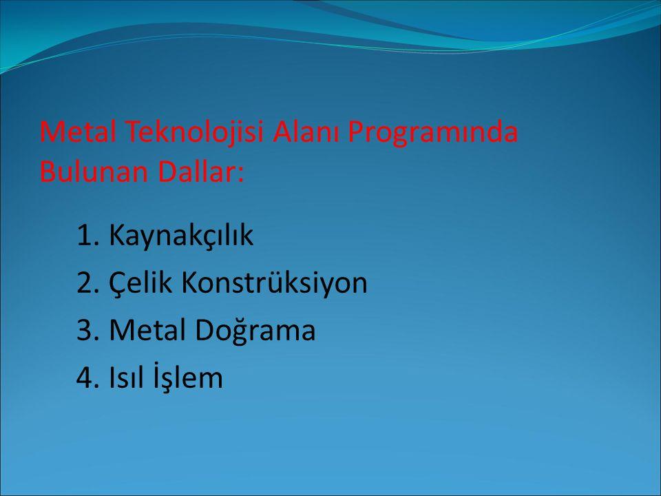 Metal Teknolojisi Alanı Programında Bulunan Dallar: 1. Kaynakçılık 2. Çelik Konstrüksiyon 3. Metal Doğrama 4. Isıl İşlem