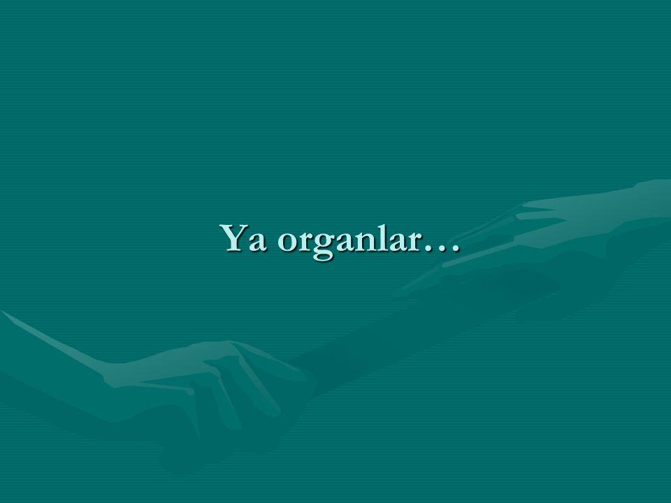 Ya organlar…