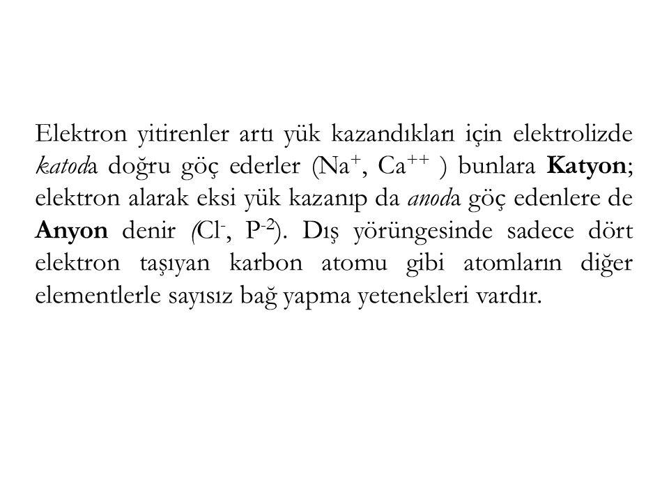 Elektron yitirenler artı yük kazandıkları için elektrolizde katoda doğru göç ederler (Na +, Ca ++ ) bunlara Katyon; elektron alarak eksi yük kazanıp da anoda göç edenlere de Anyon denir (Cl -, P -2 ).