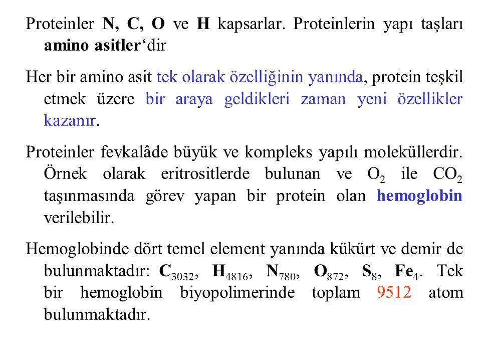 Proteinler N, C, O ve H kapsarlar.