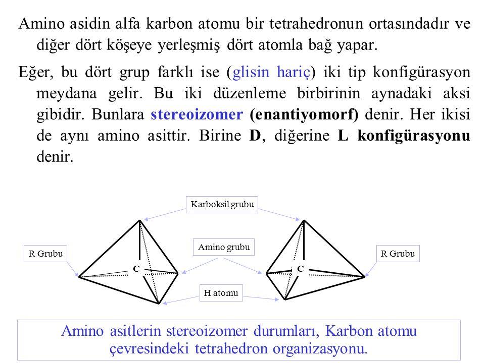 Amino asidin alfa karbon atomu bir tetrahedronun ortasındadır ve diğer dört köşeye yerleşmiş dört atomla bağ yapar. Eğer, bu dört grup farklı ise (gli