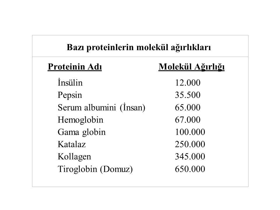 Proteinin Adı Molekül Ağırlığı İnsülin12.000 Pepsin35.500 Serum albumini (İnsan)65.000 Hemoglobin67.000 Gama globin100.000 Katalaz250.000 Kollagen345.000 Tiroglobin (Domuz)650.000 Tablo Bazı proteinlerin molekül ağırlıkları