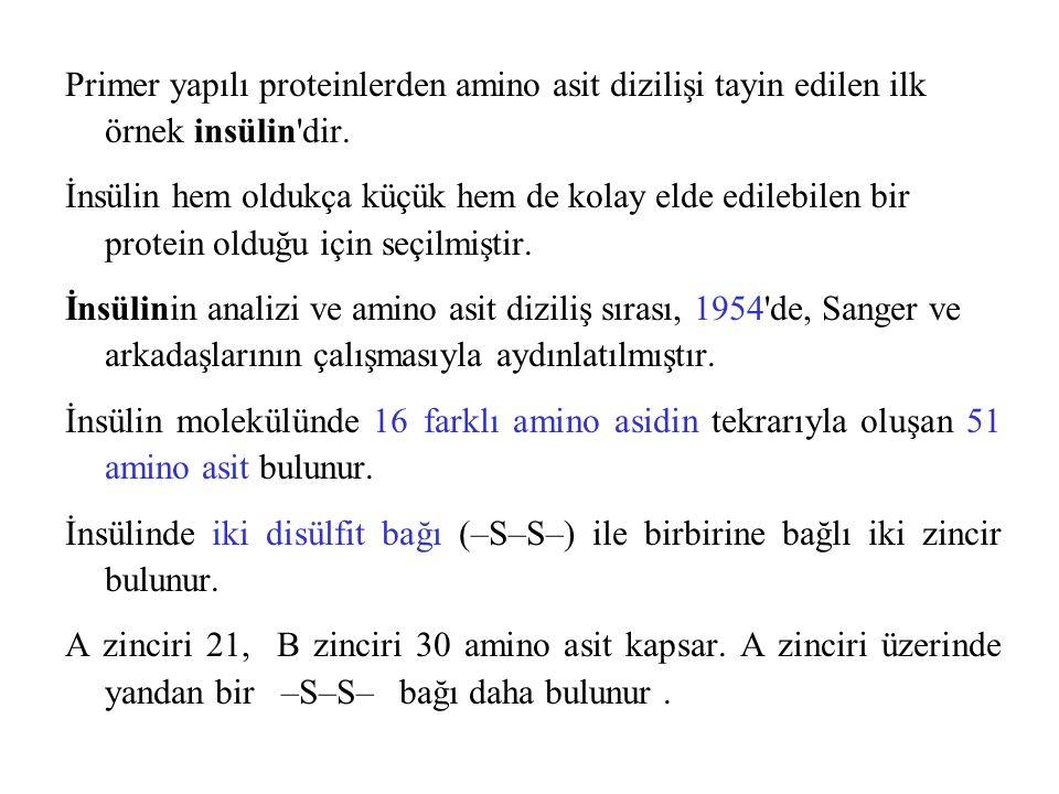 Primer yapılı proteinlerden amino asit dizilişi tayin edilen ilk örnek insülin'dir. İnsülin hem oldukça küçük hem de kolay elde edilebilen bir protein