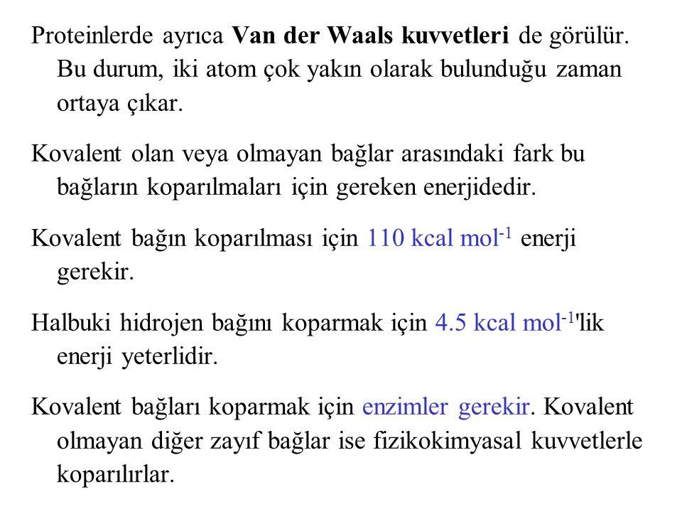 Proteinlerde ayrıca Van der Waals kuvvetleri de görülür. Bu durum, iki atom çok yakın olarak bulunduğu zaman ortaya çıkar. Kovalent olan veya olmayan