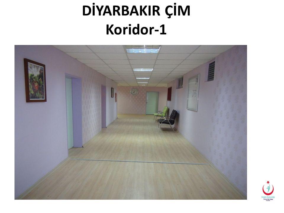 DİYARBAKIR ÇİM Koridor-1