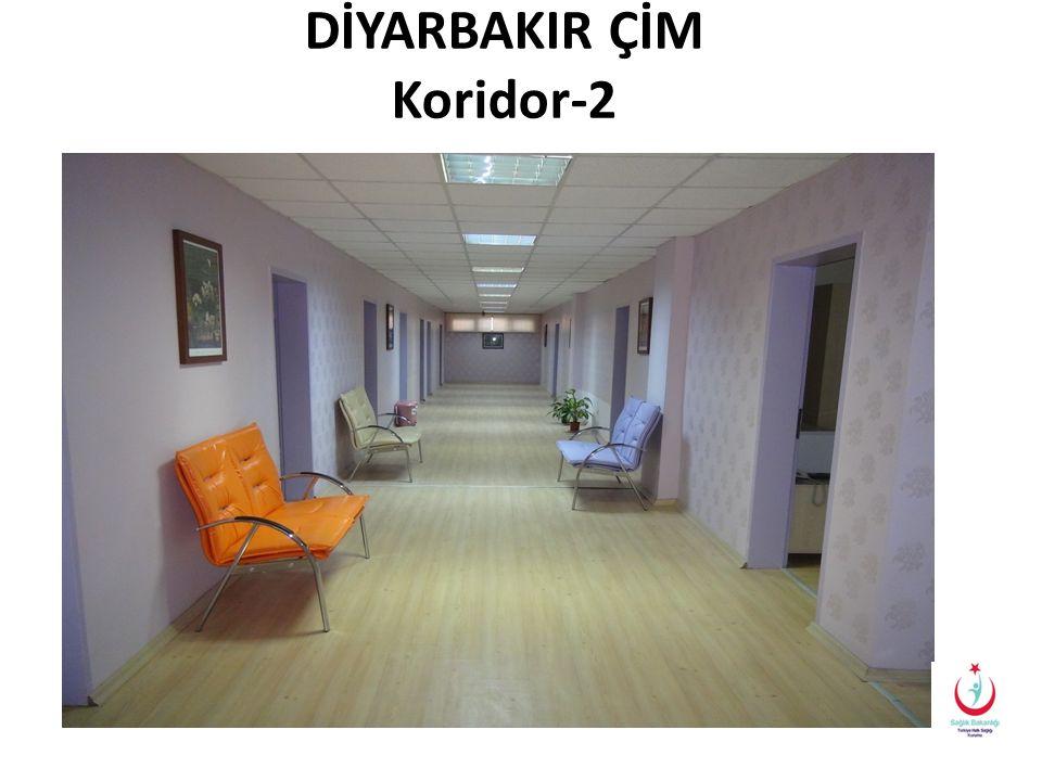 DİYARBAKIR ÇİM Koridor-2