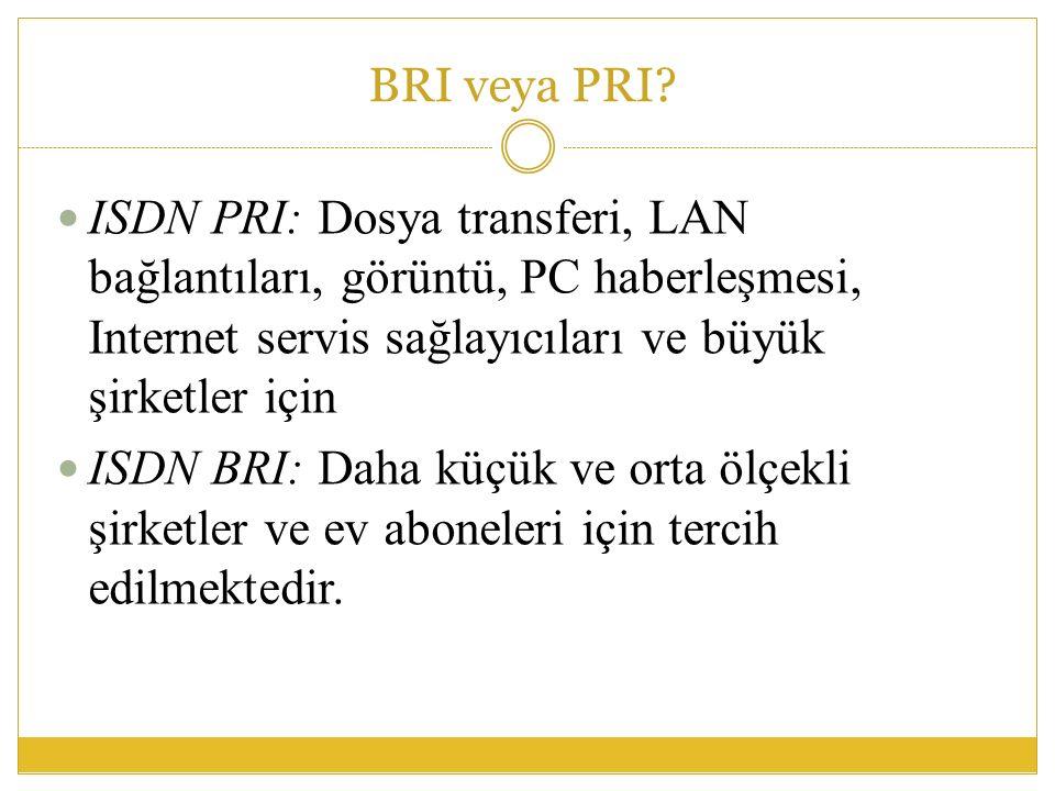 BRI veya PRI.